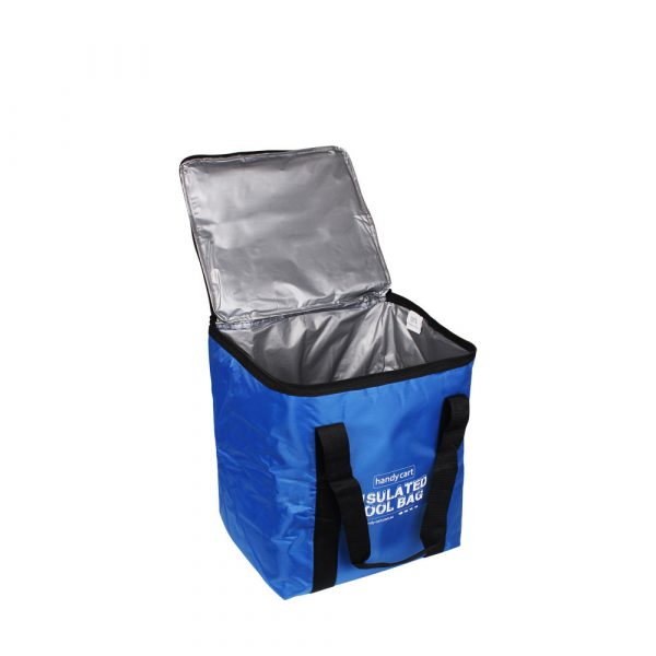 Cool Bag Regular